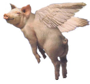 What?  Pigs are flying?