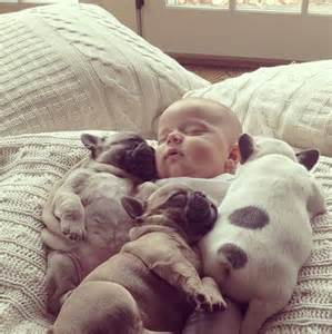 sleeping dogs and baby